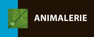ANIMALERE